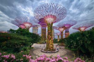 Kinh nghiệm đi chơi ở Gardens by the Bay Singapore